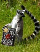 Literature Lemur Leaf