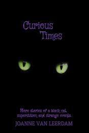 Curious Times eBook